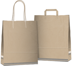 grocery bags.png