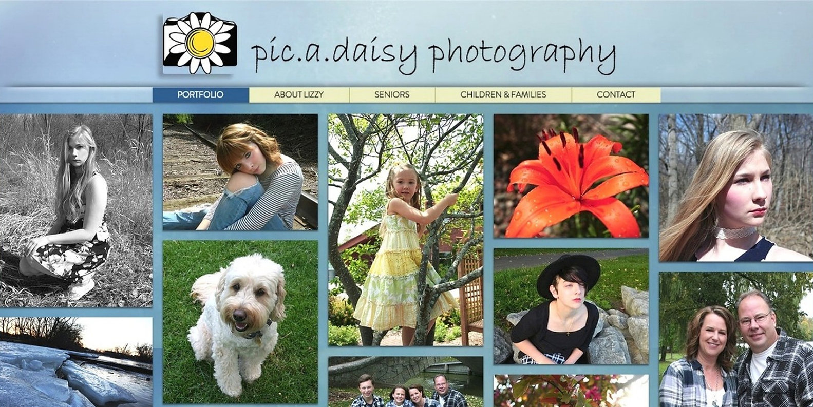 picadaisy website homepage screenshot bi