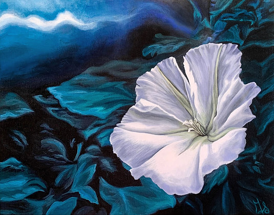 Moonflower Stretched Canvas Giclee Print