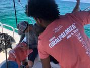 Coralpalooza™_2019_Coral_Vita_073.JPG