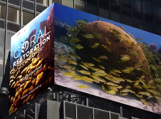 Hope for Coral Reefs Takes Hold in Times Square