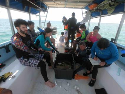 Coralpalooza™_2019_Oceanus_058.JPG