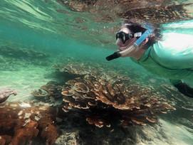 Coralpalooza™_2019_Oceanus_061.JPG