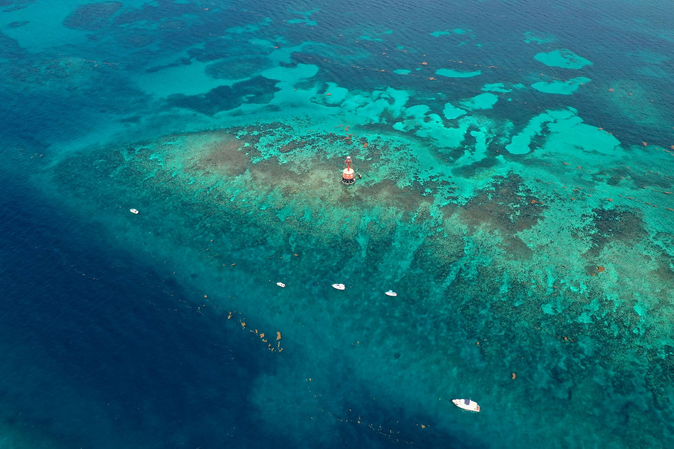 Carysfort-Reef-Boats-Coralpalooza-2019 C
