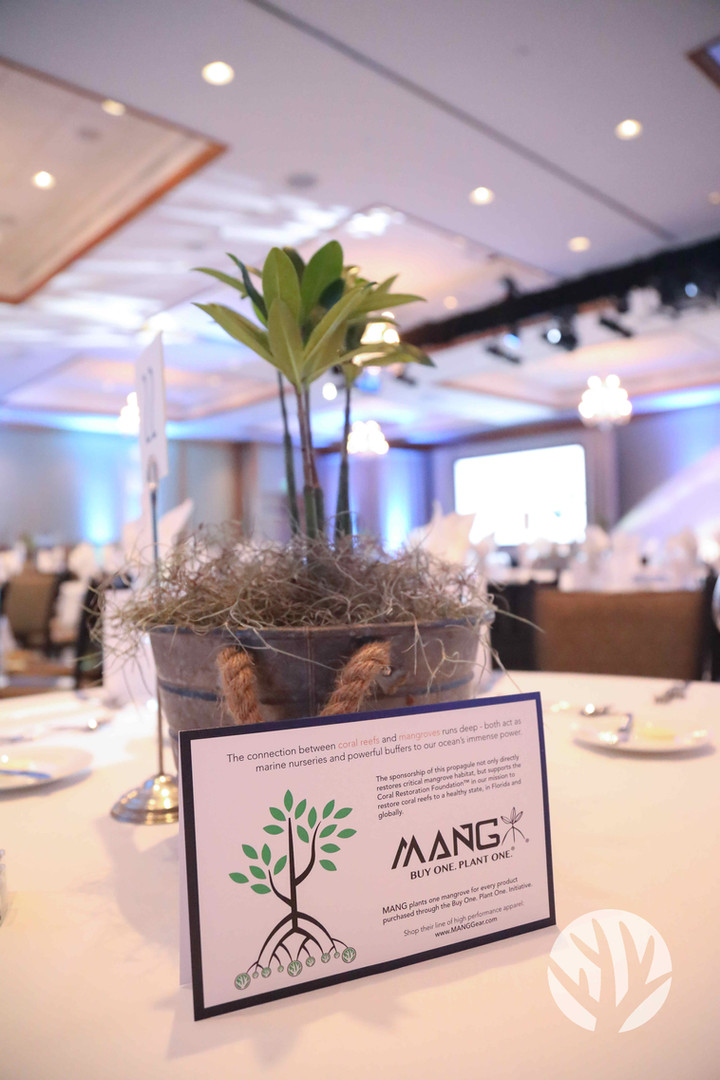 Mangrove centerpieces from MANG, on thei