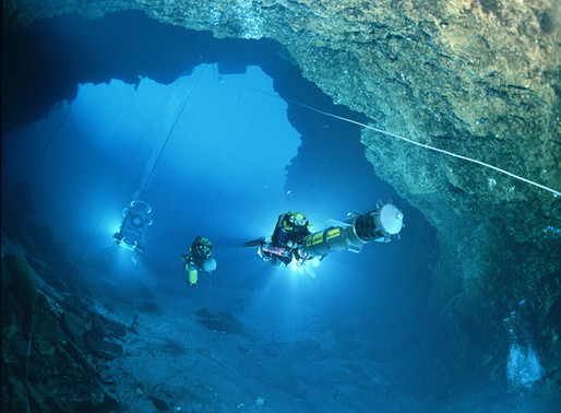 Dive into Unexplored Depths with Raise the Reef Keynote Speaker Jill Heinerth