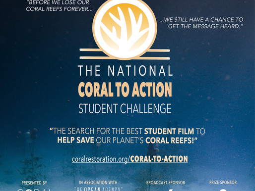 The Search is on for a Student Film to Help Save Coral Reefs