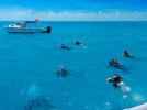 Coralpalooza™_2019_MOTE_052.JPG