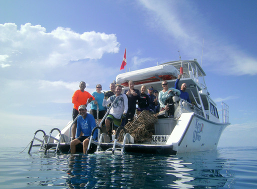 A Key to Save Our Reefs