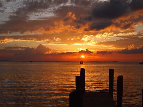 Coralpalooza™_2019_Coral_Restoration_Fou