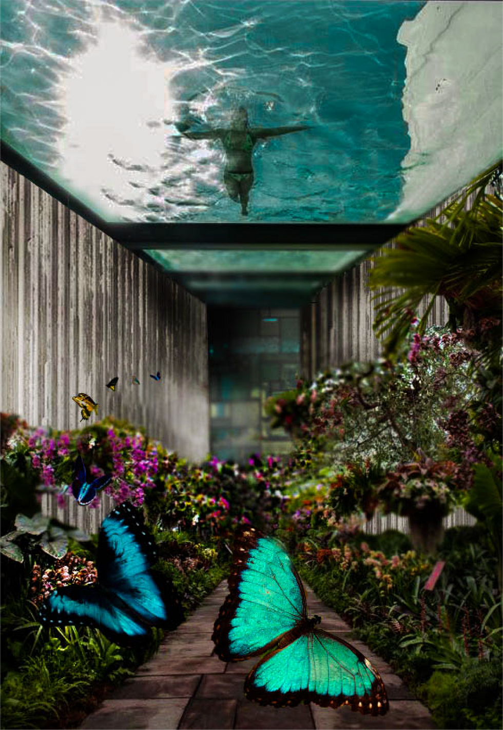 Natural Swimming Pool and Butterfly House