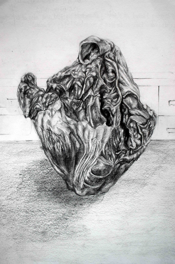 Life drawing after a pig's heart - 2018