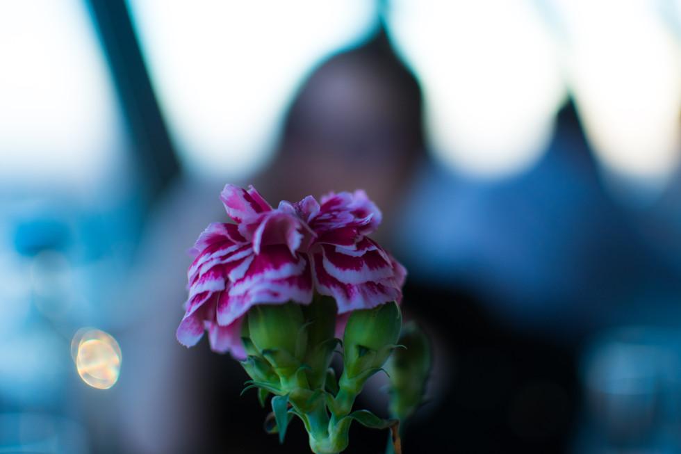 Flower - 2019