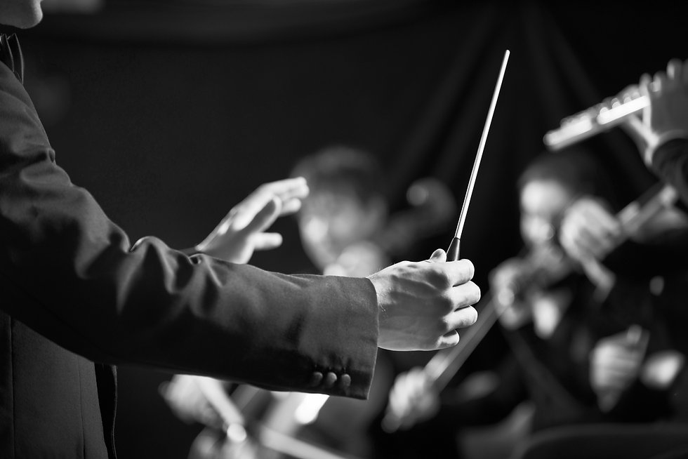 Orchestra Conductor on Stage_edited.jpg