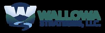 wallowa-strategies-logo-color.png