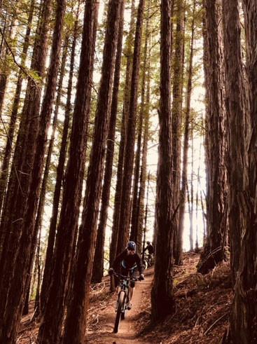 high-trails-gallery-12.jpg