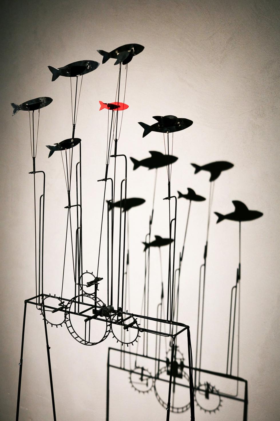 banc de poissons : à Boulet