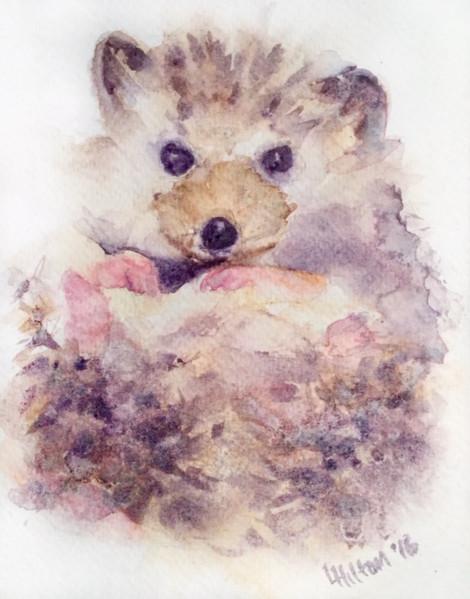 Hedgehog III