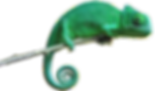 Chameleons.png