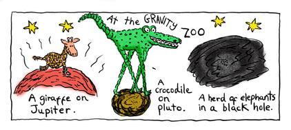 Gravity Zoo