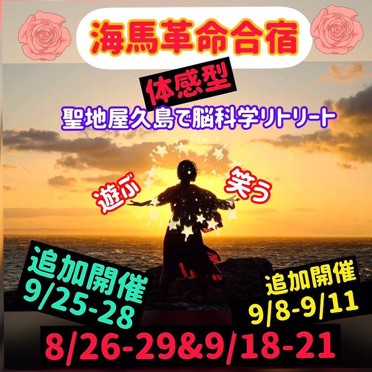 【残枠3】海馬革命合宿
