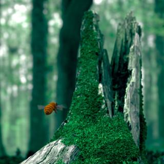 Bee Short Film (WIP)