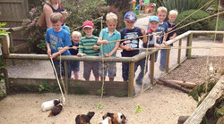 37172-axe-valley-wildlife-park-axminster-01