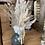 Thumbnail: Vase et bouquet de fleurs séchées