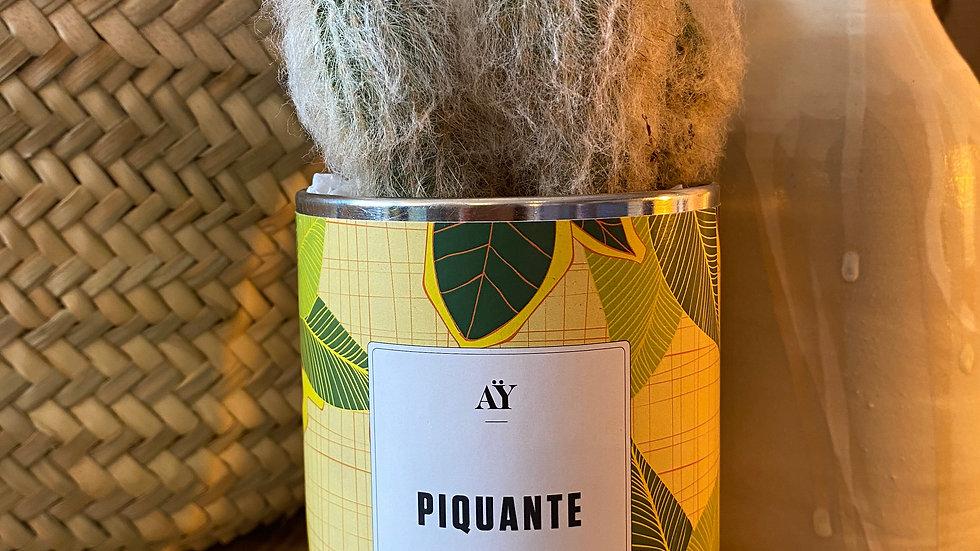 Cactus Piquante