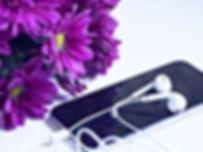 flower-3041518_640_edited.jpg