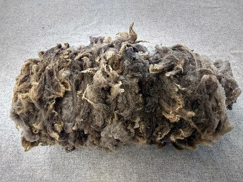 Taupe Shetland Fleece