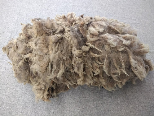Fudge Shetland Fleece