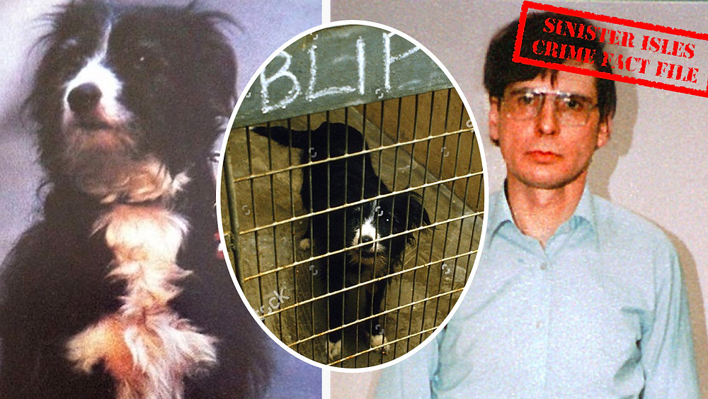 Poor Bleep was kept in a cold, barren cage at Battersea Dog's Home after Dennis Nilsen's arrest