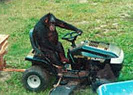 Travis was also given the freedom of his own sit on lawnmower