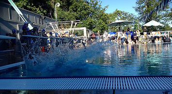 Swim Team - Splash img.jpg