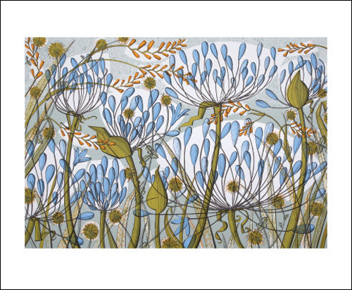 Angie Lewin - Agapanthus-Flowers- Art Angels Blank Card