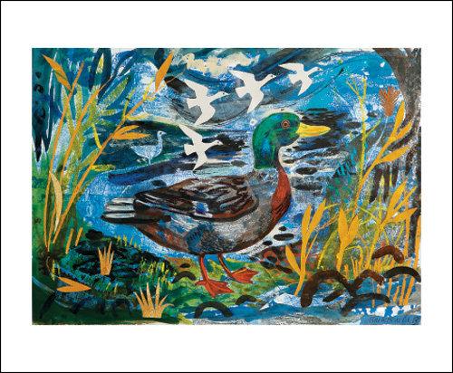 Mark Hearld - Card - Mallard Duck / Blank Card