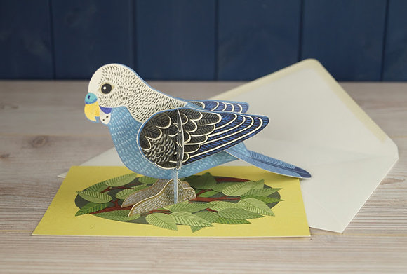 Alice Melvin - Pop Out Pet Budgie - 3D Card by Art Angels