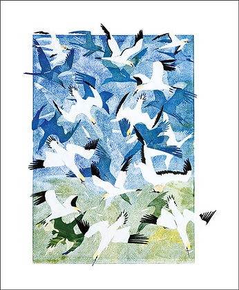 Barrage of Gannetts - by Ruth Oinn - Art Angels Printmakers Card