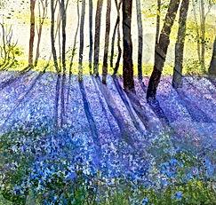 Marion Shave-Bluebells-Littlebury-Woods-