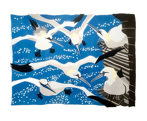 Westray Gannets - by Lisa Hooper - Art Angels Printmakers Collection