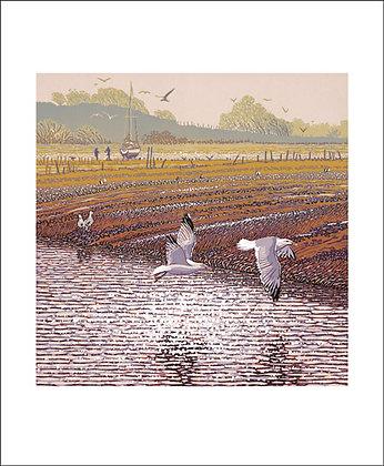 Mark Pearce - Estauary View - Art Angels Printmakers Cards