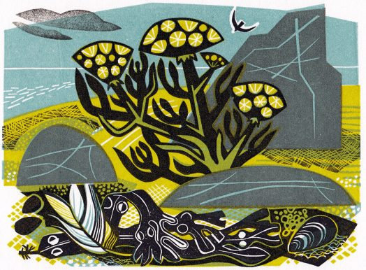 Linocut of Rock Samphire by Printmaker Clare Curtis