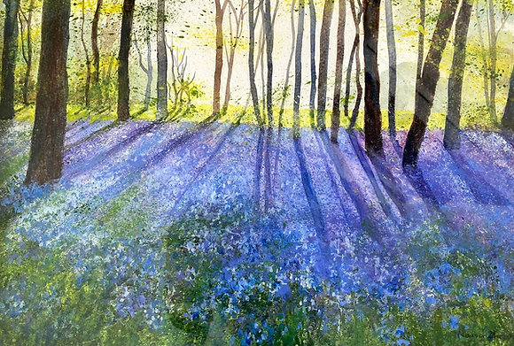 Marion Shave - Bluebells Littlebury Woods