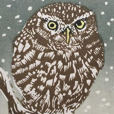 A Winter Perch - Linda Richardson
