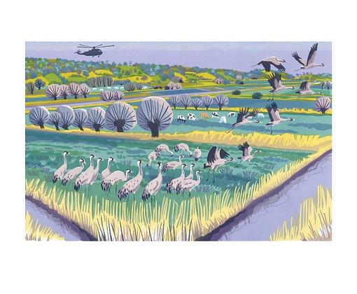 Carry Akroyd - Level Cranes - Suffolk Coast