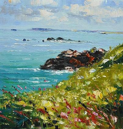 Debbie Scott - Summer Coast - Cornwall