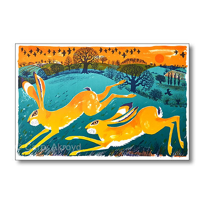 Carry Akroyd - Hare Pair