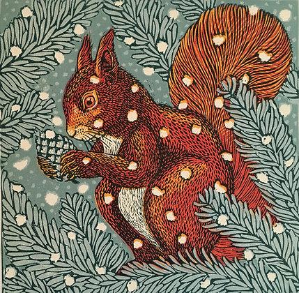 Red Squirrel - Vanessa Lubach-Church Street Gallery
