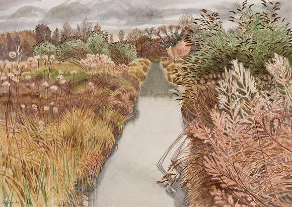 Ivy Smith - Whitlingham Marsh Winter